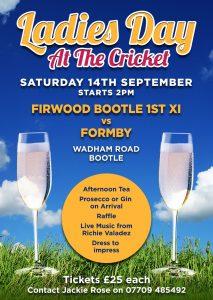 Ladies Cricket poster
